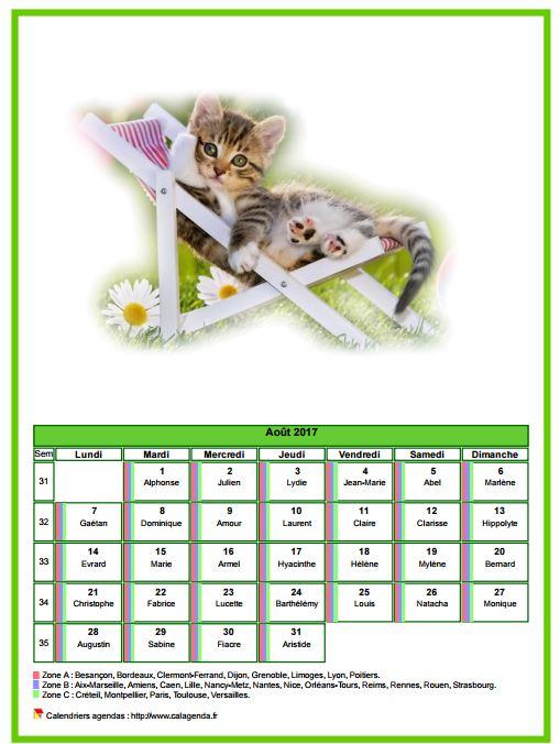 Calendrier août 2017 chats