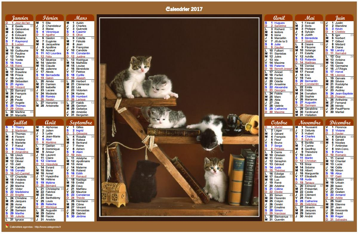 Calendrier 2017 annuel de style calendrierdes postes avec des chats