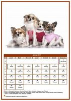 Calendrier de janvier 2017 de la série 'chiens'