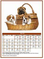 Calendrier de mars 2017 de la série 'chiens'