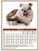 Calendrier de septembre 2017 de la série 'chiens'
