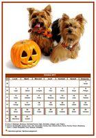 Calendrier d'octobre 2017 de la série 'chiens'