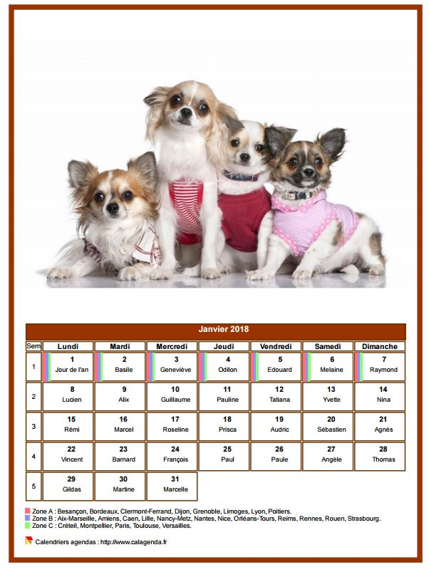 Calendrier janvier 2018 chiens