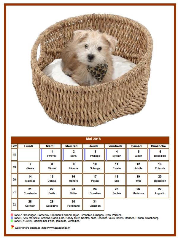 Calendrier mai 2018 chiens