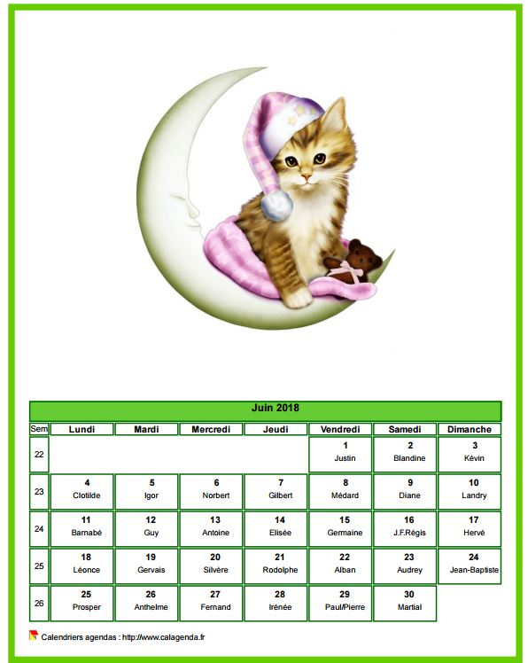Calendrier juin 2018 chats