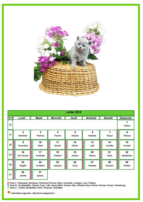 Calendrier juillet 2018 chats
