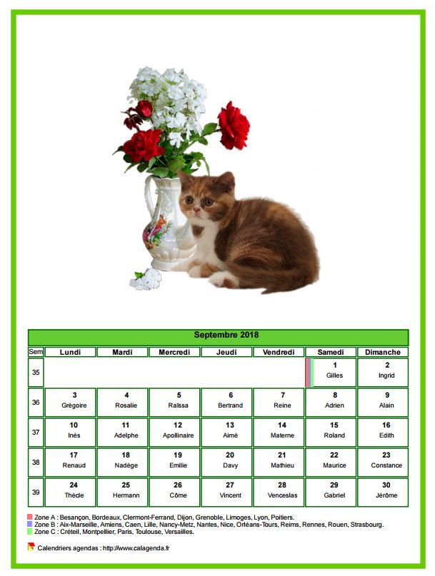 Calendrier septembre 2018 chats