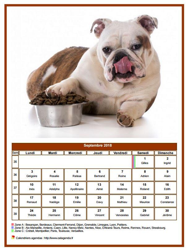 Calendrier septembre 2018 chiens