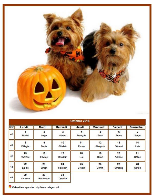 Calendrier octobre 2018 chiens
