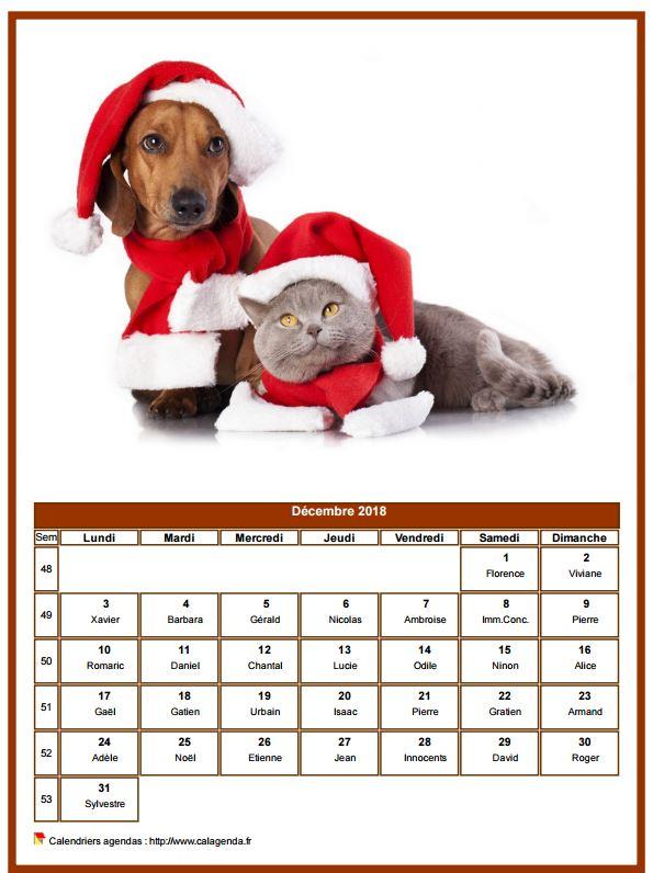 Calendrier décembre 2018 chiens