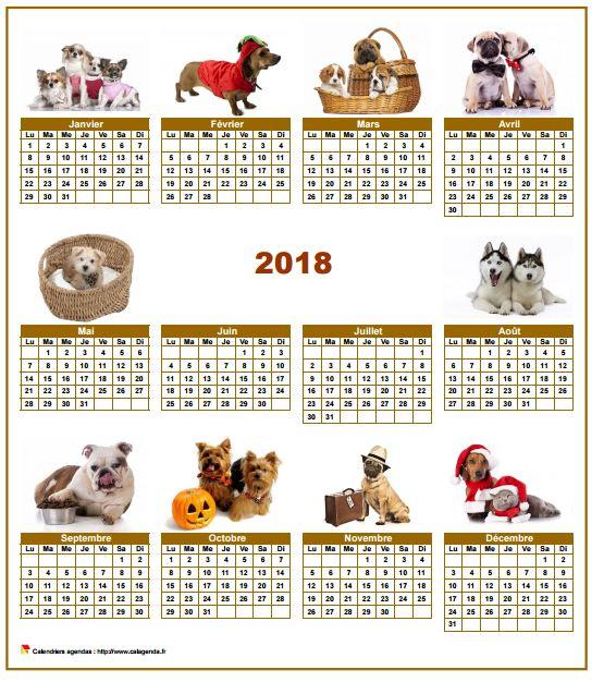 Calendrier 2018 annuel spécial 'chiens' avec 10 photos