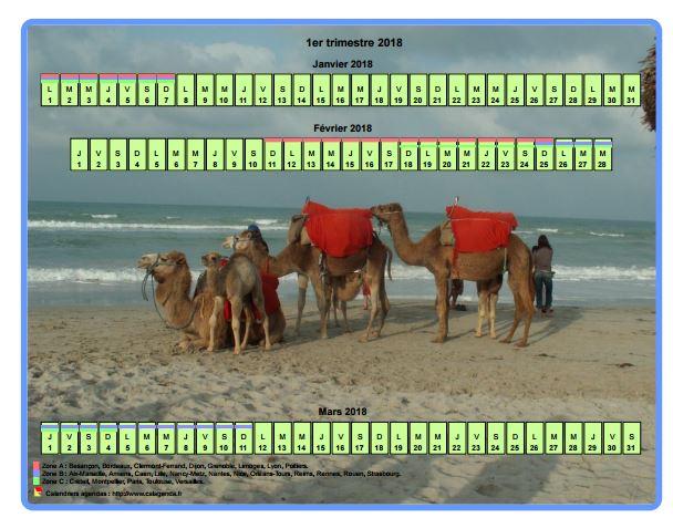 Calendrier trimestriel horizontal avec une photo en fond de calendrier