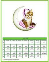 Calendrier de juin 2018 de la série 'chats'