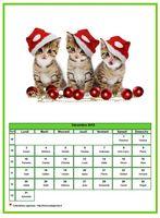 Calendrier de décembre 2018 de la série 'chats'