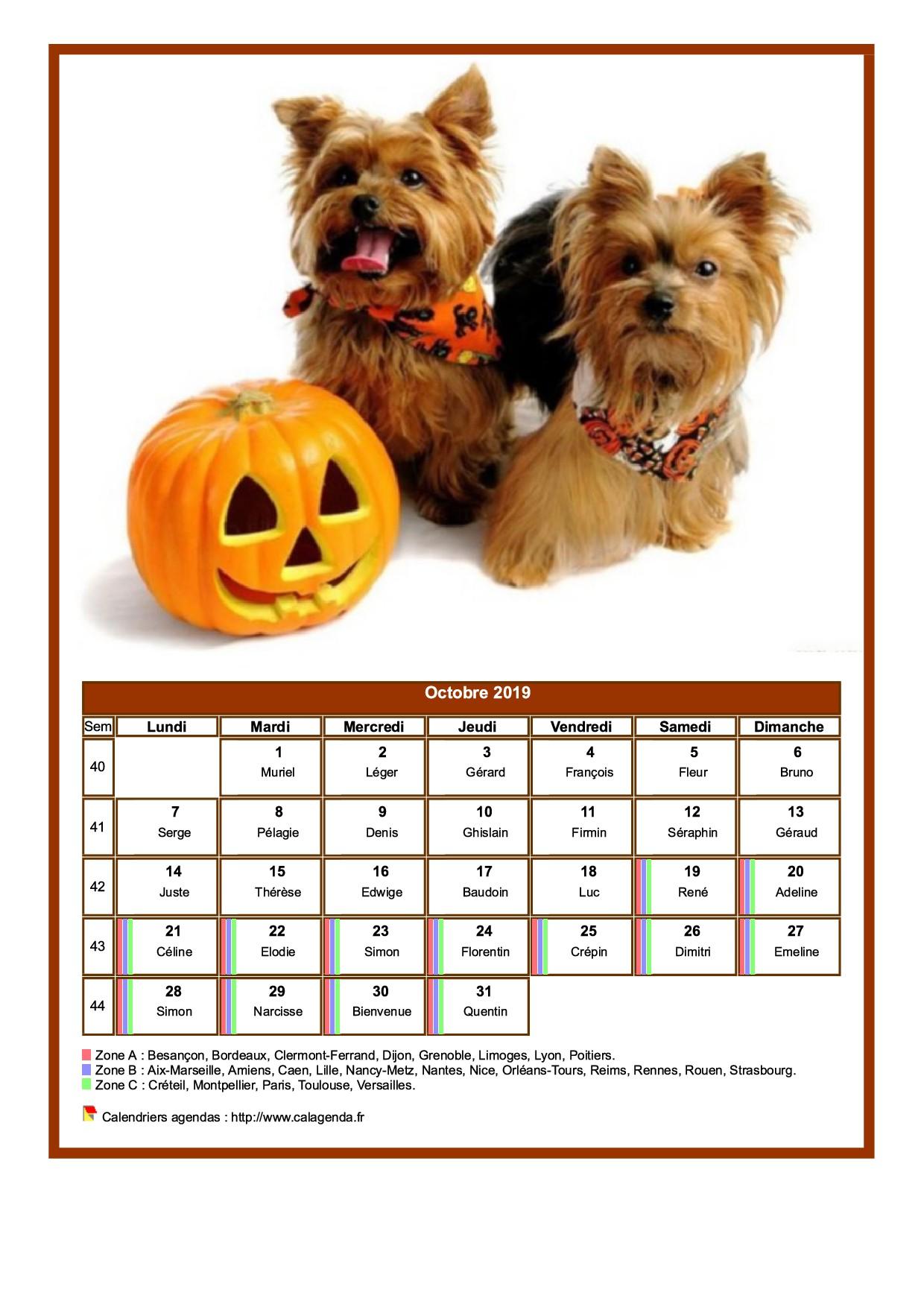 Calendrier octobre 2019 chiens
