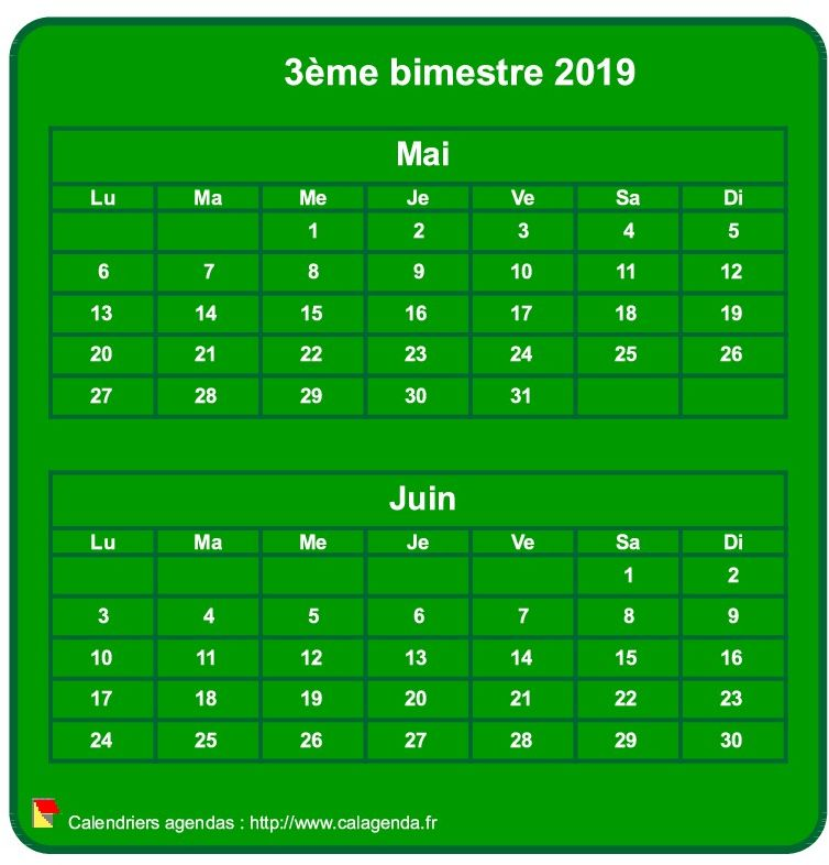 Calendrier 2019 à imprimer bimestriel, format mini de poche, vertical, fond vert