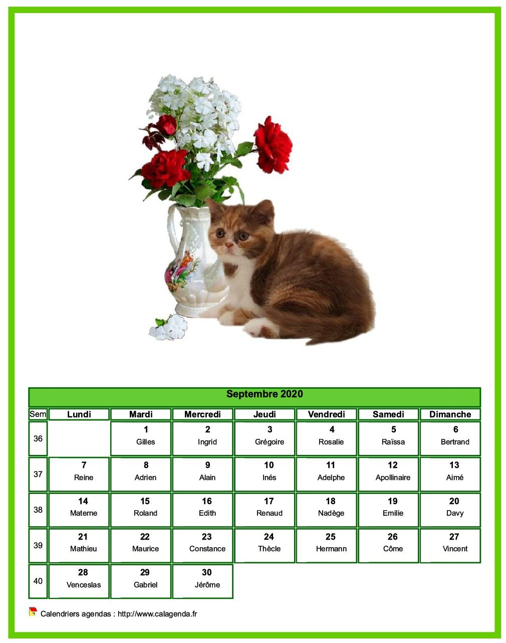 Calendrier septembre chats