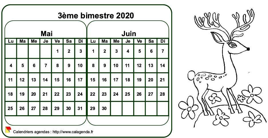 Calendrier 2020 à colorier bimestriel, format paysage, pour enfants