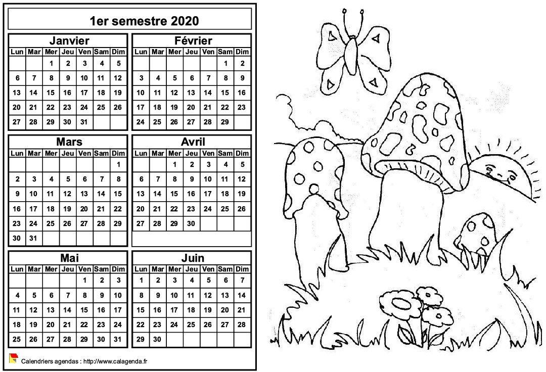 Calendrier 2020 à colorier semestriel, format paysage, pour enfants