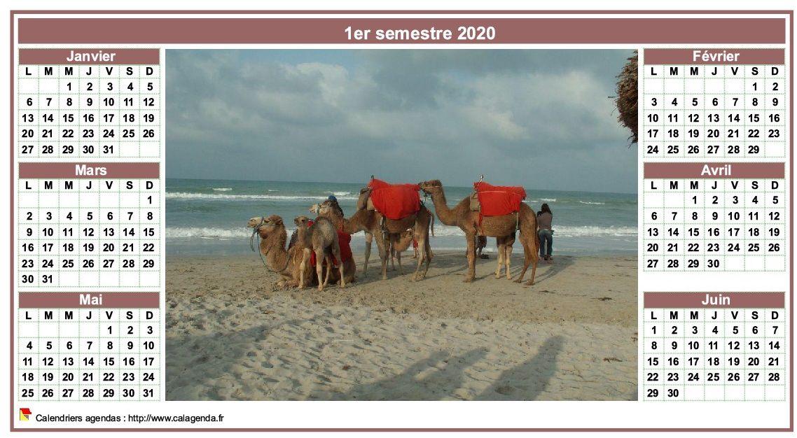 Calendrier 2020 semestriel de style calendrierdes postes avec photo au centre