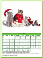 Calendrier de janvier 2020 de la série 'chats'