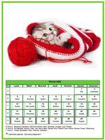 Calendrier de février 2020 de la série 'chats'