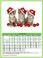 Calendrier de décembre 2020 de la série 'chats'