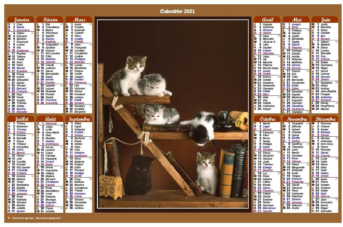 Calendrier 2021 annuel de style calendrier des postes avec des chats