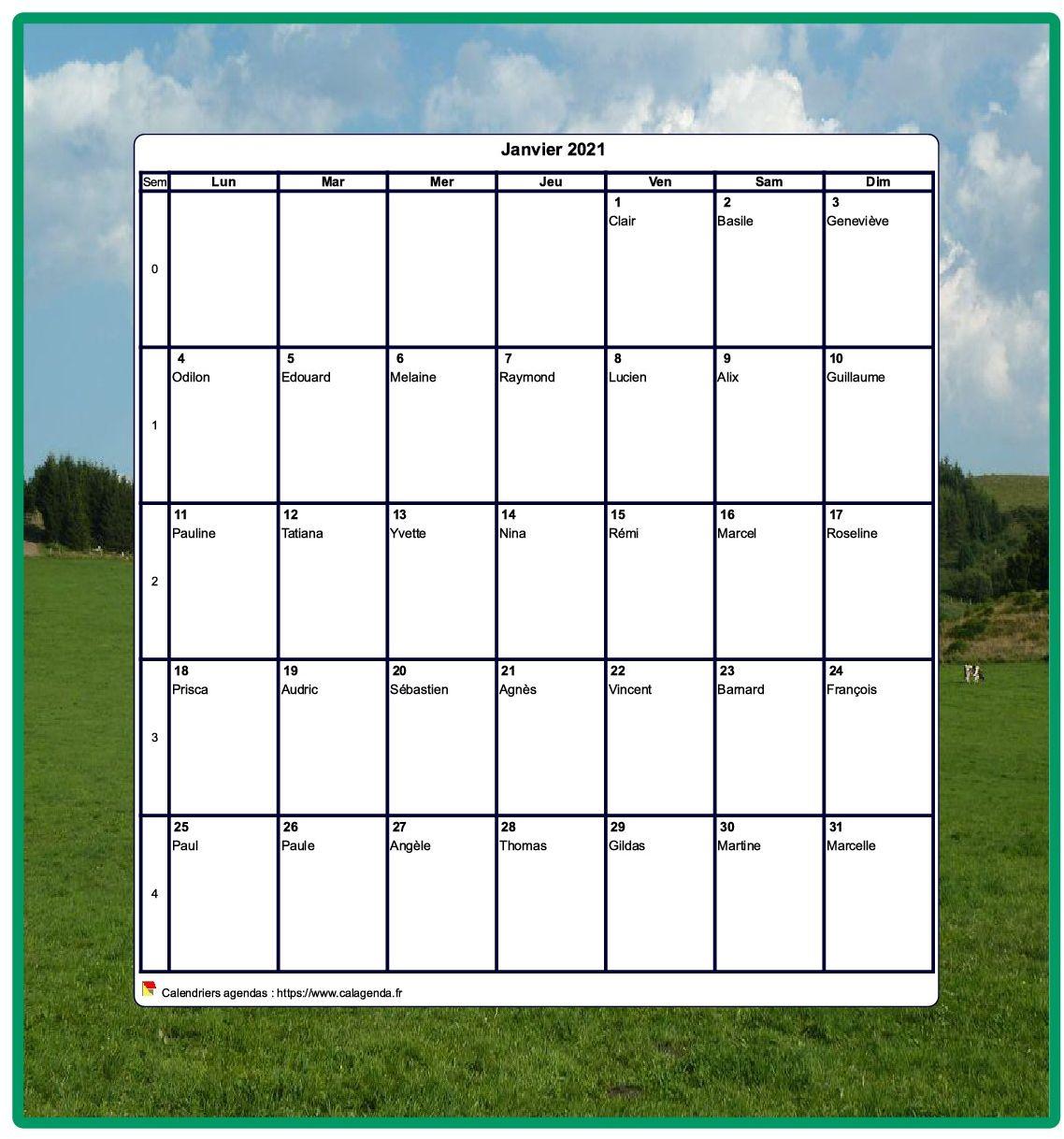 Calendrier 2021 décoratif à imprimer, mensuel , format portrait