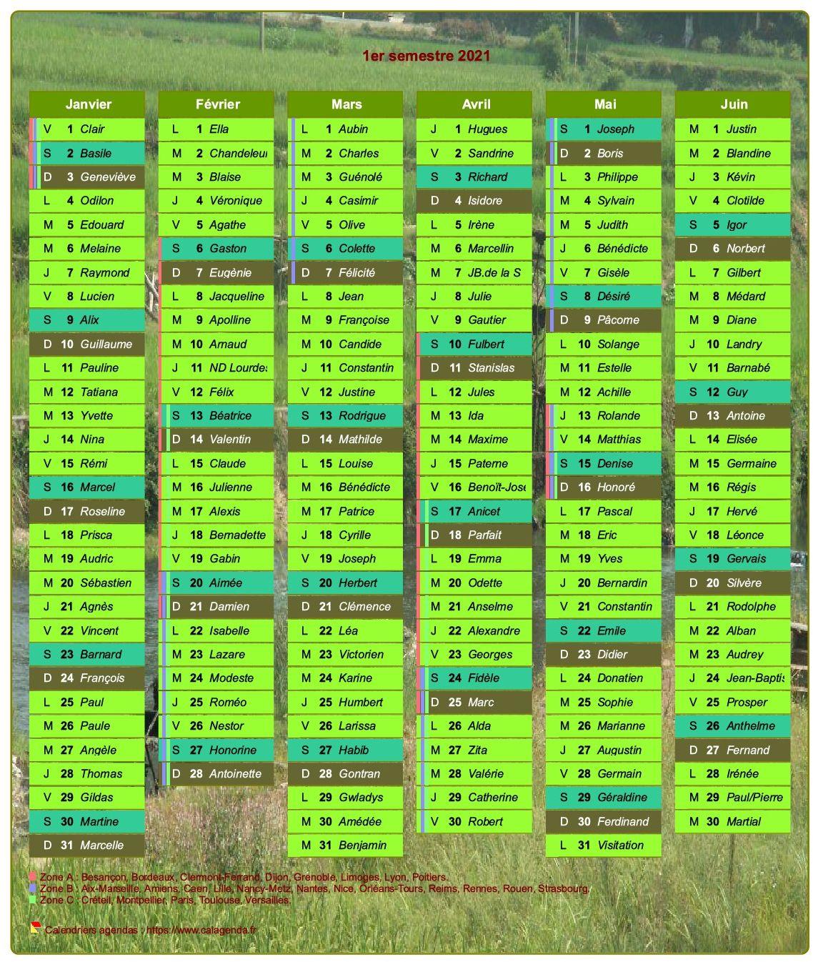 Calendrier 2021 semestriel décoratif avec agenda, format portrait, une colonne par mois