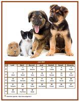 Calendrier de juin 2021 de la série 'chiens'