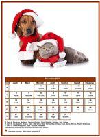 Calendrier de décembre 2021 de la série 'chiens'