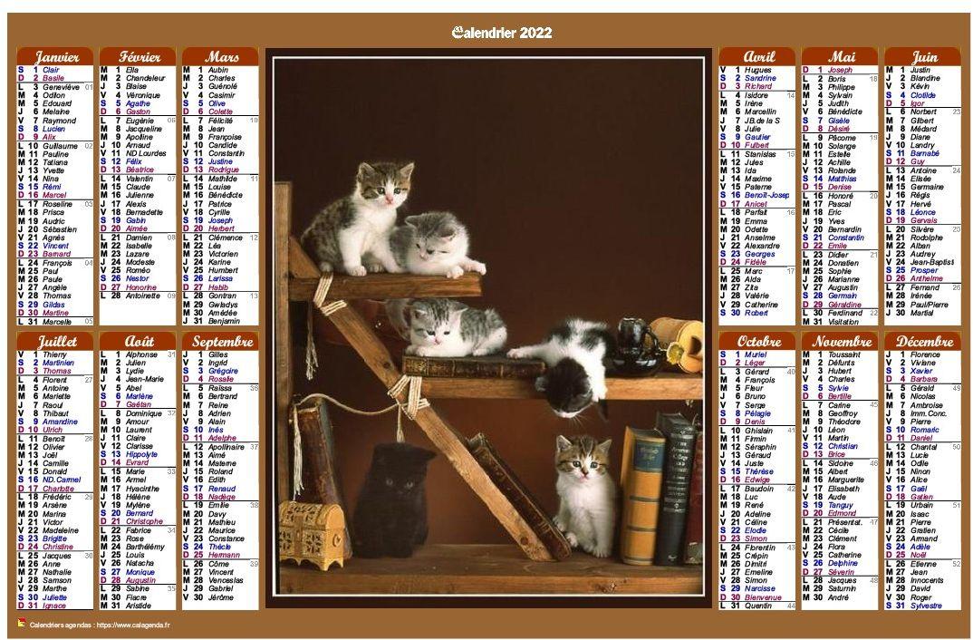 Calendrier Des Postes 2022 Calendrier 2022 annuel de style calendrier des postes avec des chats