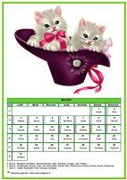 Calendrier chat du mois de mai