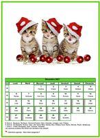 Calendrier chat du mois de décembre