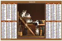 Calendrier 2013 annuel avec des chats