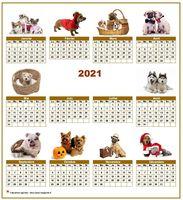 Calendrier 2013 annuel avec des chiens