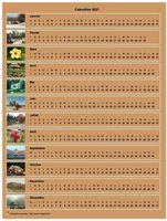 Calendrier 2013 annuel horizontal avec 12 photos