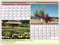 Calendrier 2014 bimestriel avec une photo différente chaque mois