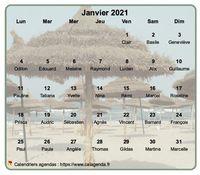 Calendrier mensuel � imprimer, en transpatence sur une photo