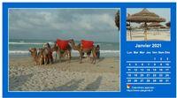 Calendrier mensuel avec deux photos