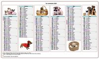 Calendrier semestriel chiens